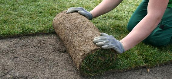 przygotowanie-terenu-pod-trawnik